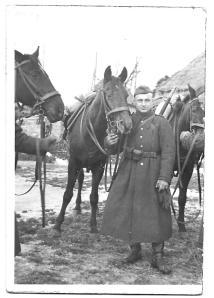 Tatus and horse
